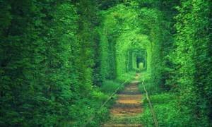 Ukrayna'daki Aşk Tüneli