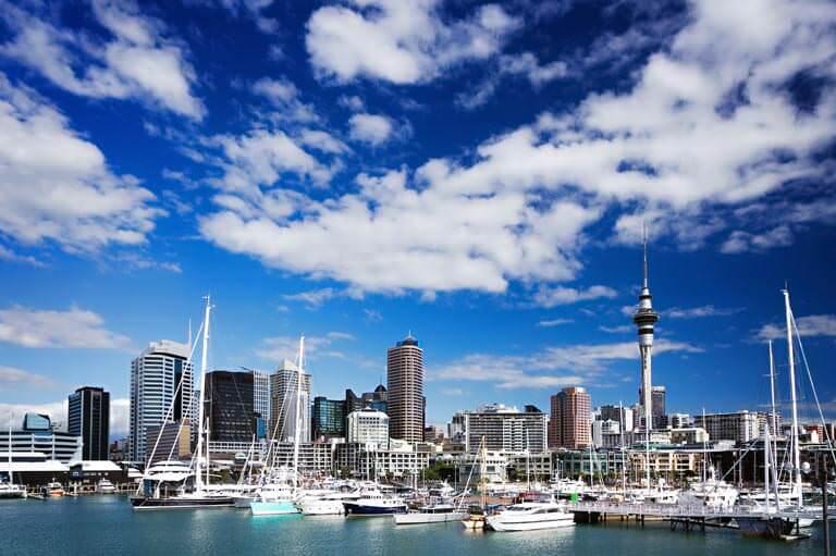 Auckland gökdelenler