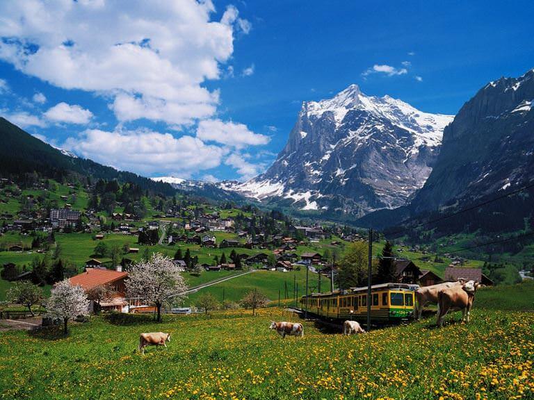 Alplerin kalbinde bir köy: Grindelwald