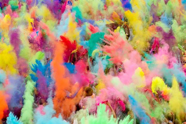 holly renkleri